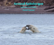 Around Spitsbergen Book